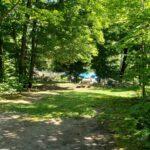 Poplars Fire Pit Area