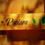 Poplars Sign